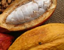 Jugo de Cacao