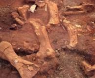 Información Ruinas del Remanso Gualaquiza