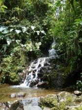 Cascadas Intag