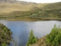 Laguna Chinchilla