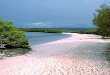Galapagos Island Ecuador Tour All Inclusive