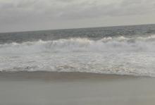 Mar Bravo Salinas