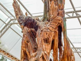 Esculturas Oyacachi
