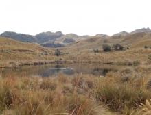 Lagunas de Loreto
