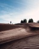 Desierto de Palmira